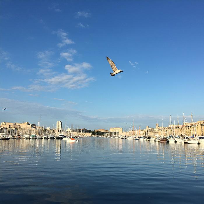 最後は建物ではなく港です。朝市も開かれる旧港、ベルジュ埠頭では、船が停泊する港の海面に鮮やかな青空が映り込み、 とても爽やかな気持ちになります。この近辺は商店やカフェなども多くあり、散策におすすめですよ。