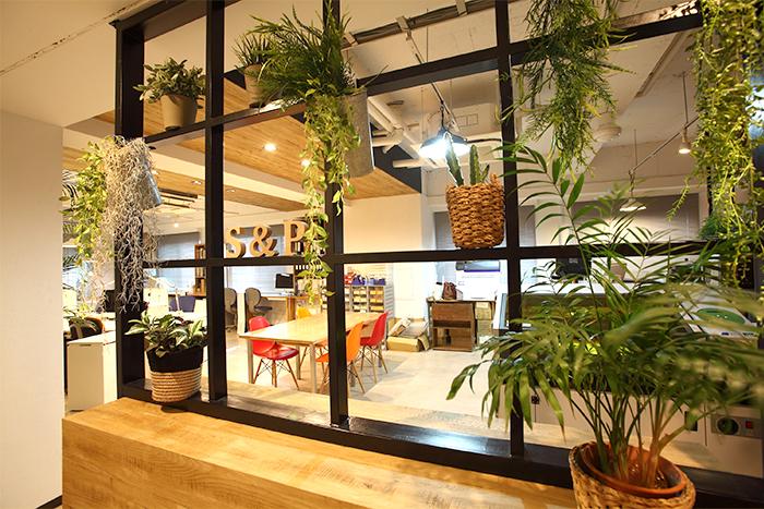 無機質になりがちなオフィスも、鮮やかな色合いの家具とグリーンの配置でぱっと明るく見えます。