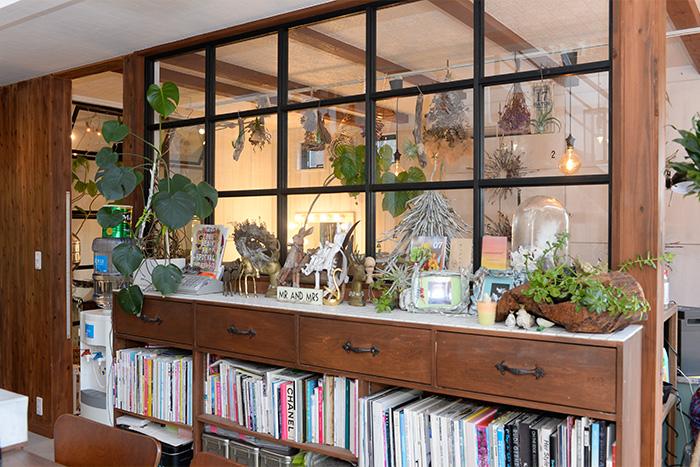 グリーンを活かしたディスプレイが美しいキャビネットには、写真集や料理本などがぎっしり。