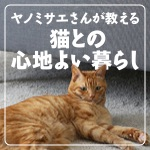 ヤノミサエさんが教える 猫との心地よい暮らし