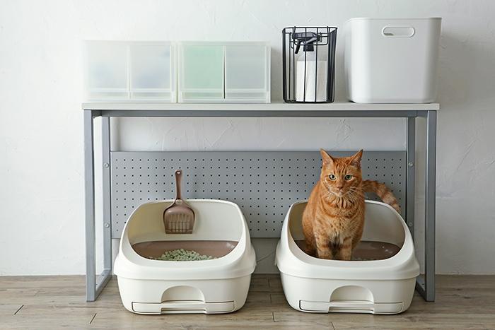 臭いや汚れが気になる猫用トイレ…掃除しやすい仕組みがキレイを保つ!猫のトイレ用品の収納