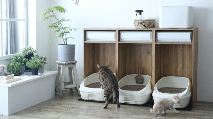 カラーボックスに猫トイレ!? 猫砂やおもちゃを収納できるシステム収納として大胆アレンジ