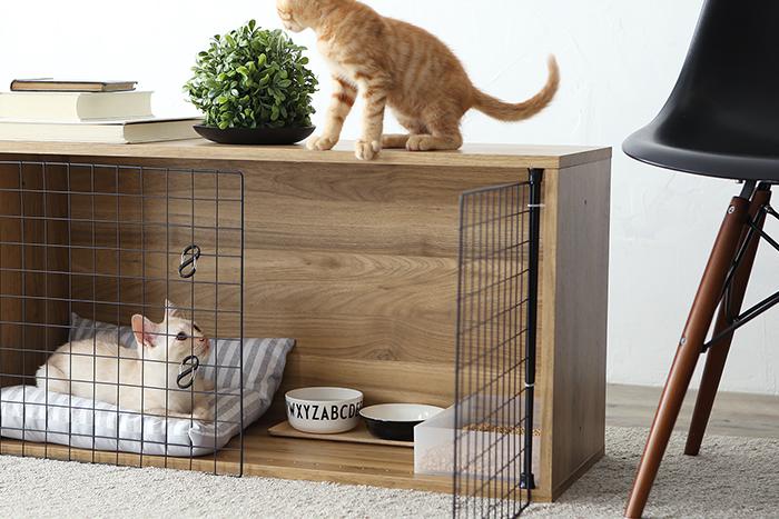 使うのはカラーボックスと100均アイテムだけ!? 子猫や子犬など小さいペット用の簡易ケージ